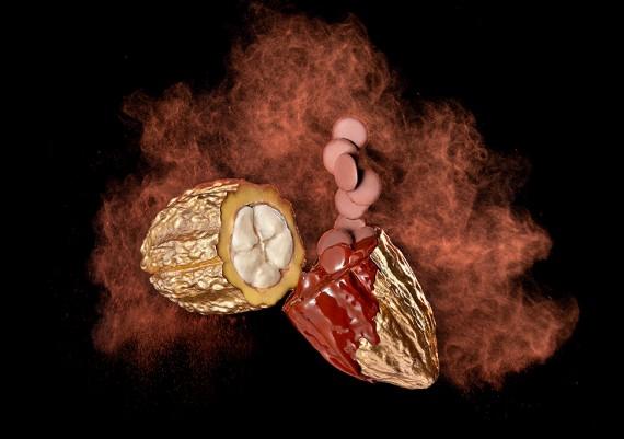 Photographie Culinaire créative Chocolat CEMOI
