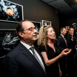Stefano De GrandisMilano 21/06/2015Visiter du président Hollande a expo