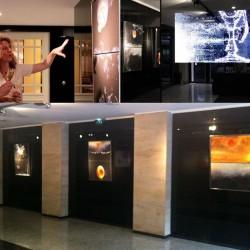 galerie-des-nouvelles-images-hotel-scribe-paris-pauline-daniel