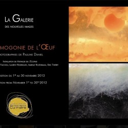 images-hotel-scribe-paris-pauline-daniel-exposition