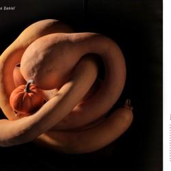 magazine-gault-et-millau-daniel-photographie-02