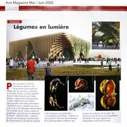 Arts Magazine Pauline Daniel BD