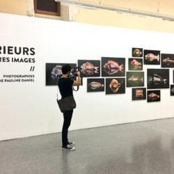 eteindiens-arles-exposition-paulibne-daniel-photographie-009