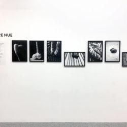eteindiens-arles-exposition-paulibne-daniel-photographie-011