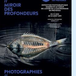 poisson-photographie-mer-Pauline-Daniel-017