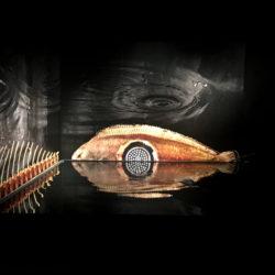 poisson-photographie-mer-Pauline-Daniel-032